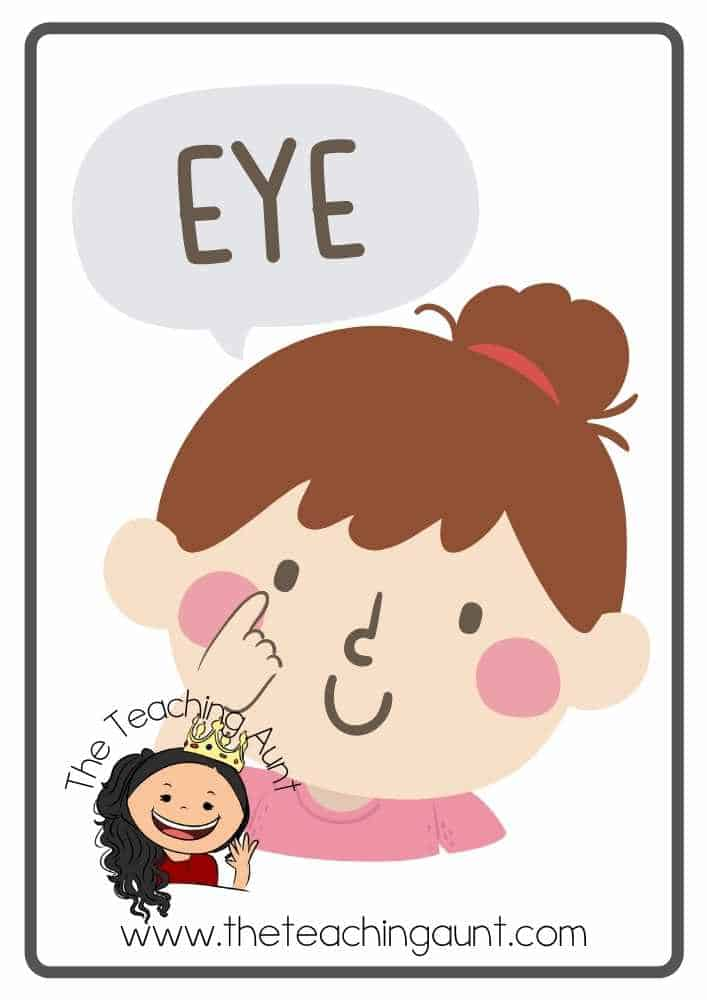 Free Parts of the Body Flashcards- Eye