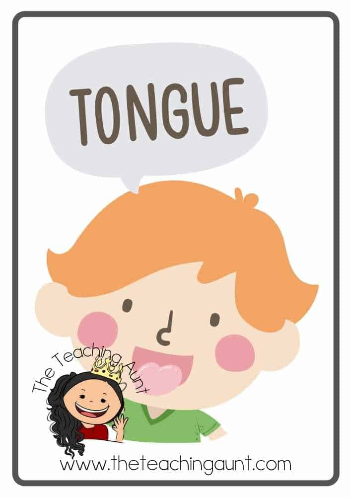 Free Parts of the Body Flashcards- Tongue